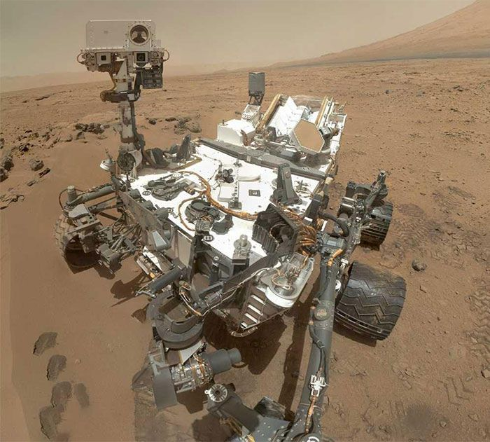 watch-an-insect-life-form-walk-on-mars1-1