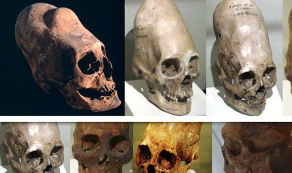 DNA Test Reveal That The Paracas Skulls Are Not Human Remains