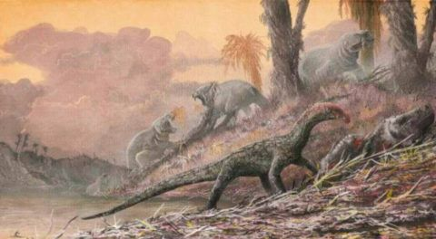 Dinosaur Ancestors Looked Like Crocodiles, New Study Reveals