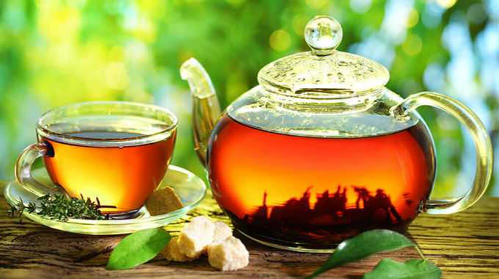 Key To A Good Memory Comes From Cup Of Tea