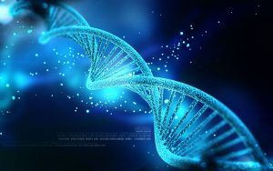 If DNA Is A Software, Who Coded It?