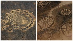 'Nazca Lines' In Mideast: Mystifying Geoglyphs Might Be Evidence Of Advanced Ancient Civilization