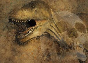 Human-Dinosaur Coexistence: Why Don't We Find Man & Dinosaur Fossils Together?