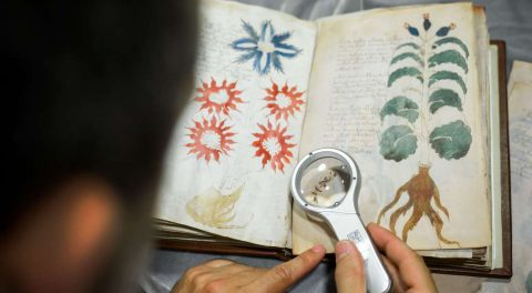 Voynich Manuscript Mystery Solved? It's A Female Gynecology Guide, Expert Claims