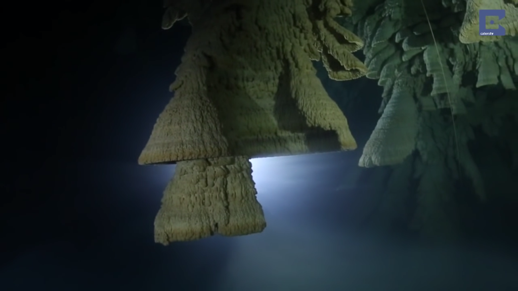 Mysterious Bell-Shaped Stalactites Discovered In Limestone Sinkhole In Mexico