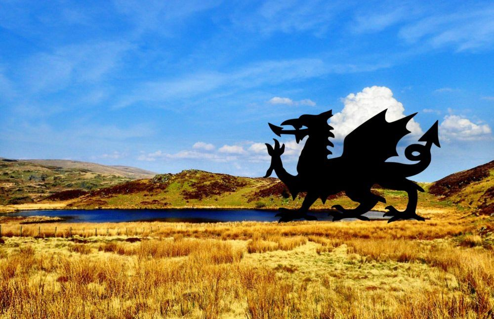 Land Of The Dragon: Search For Traces Of Mythical Creature (Part 1)