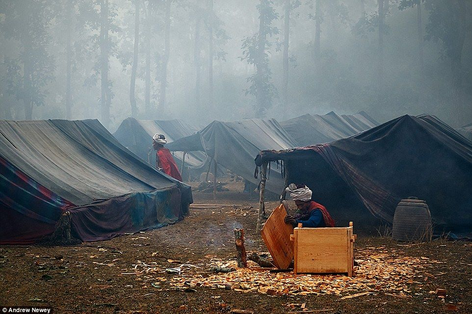 35D68DC100000578-3669621-In_recent_years_with_forests_slowly_disappearing_the_Raute_peopl-a-7_1467613965966
