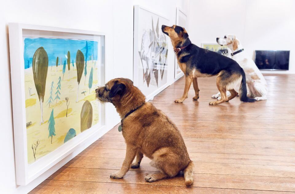 dog-gallery-wall-art-960x632
