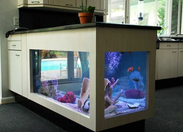 kitchen fish tank
