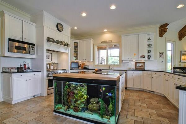 kitchen aquarium