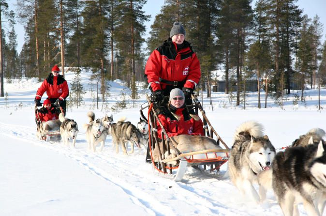 lapland-christmas-family-friendly-husky-sled-ride-from-rovaniemi-in-lapland-166404