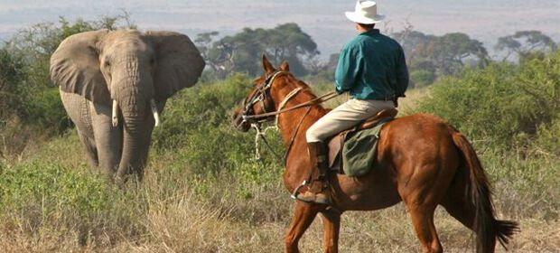 naivasha-horse-riding-safari