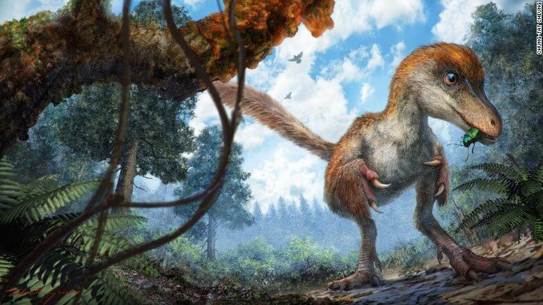 Tail Of A 99-Million-Year-Old Dinosaur Discovered Trapped In Amber