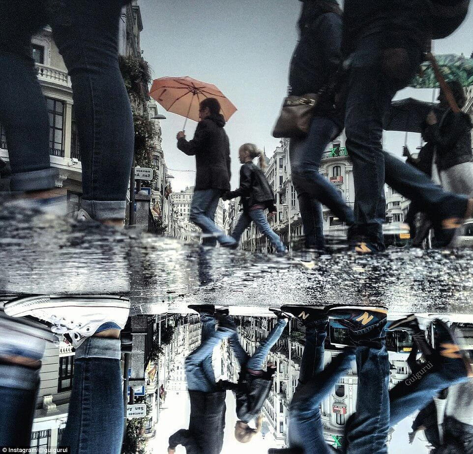 Amazing Smartphone Images That Capture 'Hidden Parallel Worlds' In Puddle Reflections