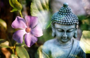 Zen Buddhism And Its Perspective Of Life
