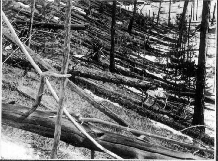 The Tunguska Event: An Intriguing Challenge For Modern Science