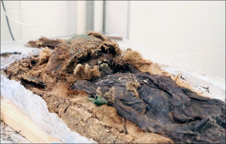 A Glimpse Into A Forgotten Past: Scientists Recreate Life And Time Of An 800-Year-Old Arctic Boy