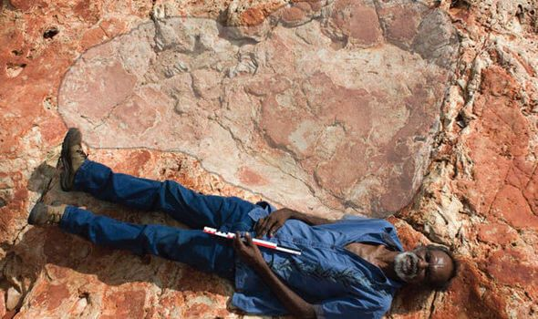 World's Most Diverse Set Of Dinosaur Tracks Discovered In Australia