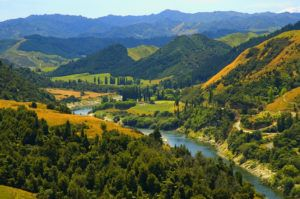 New Zealand Recognizes River As 'Legal person' For First Time In The World
