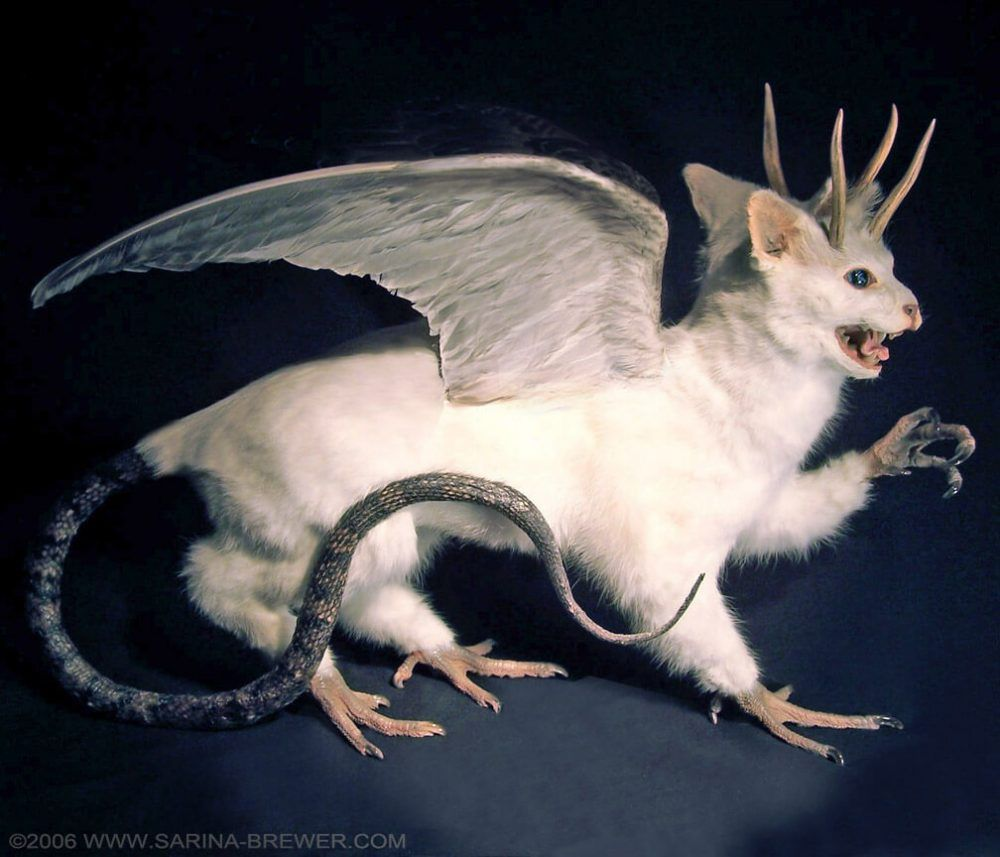 10 Of The Most Rouge Taxidermy Artists Creating Imaginative Sculptures