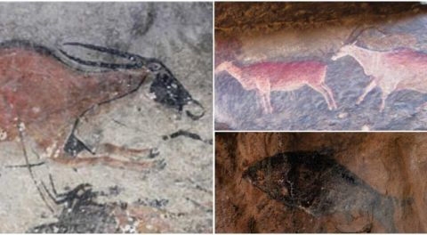 Oldest Known Rock Art Dating Back To 5000 Years Discovered In Southern Africa