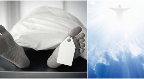 Life After Death: Scientists Reveal Shocking Research Findings