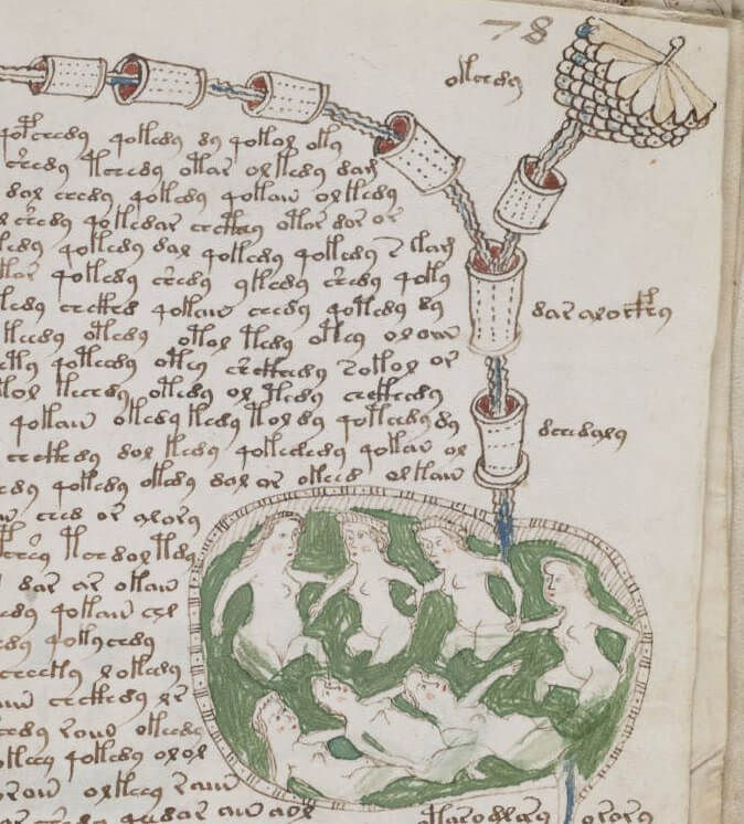 voynich_manuscript_bathtub2_example_78r_cropped-1