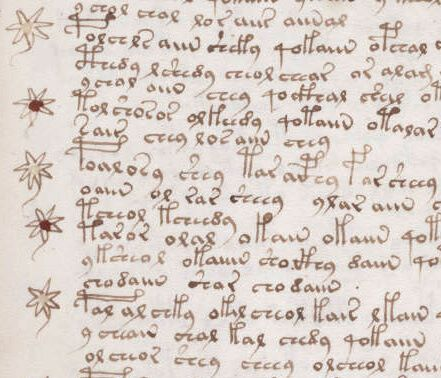 voynich_manuscript_recipe_example_107r_crop-1