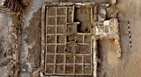 4,000-Year-Old Unique Funerary Garden Discovered Outside Egyptian Tomb