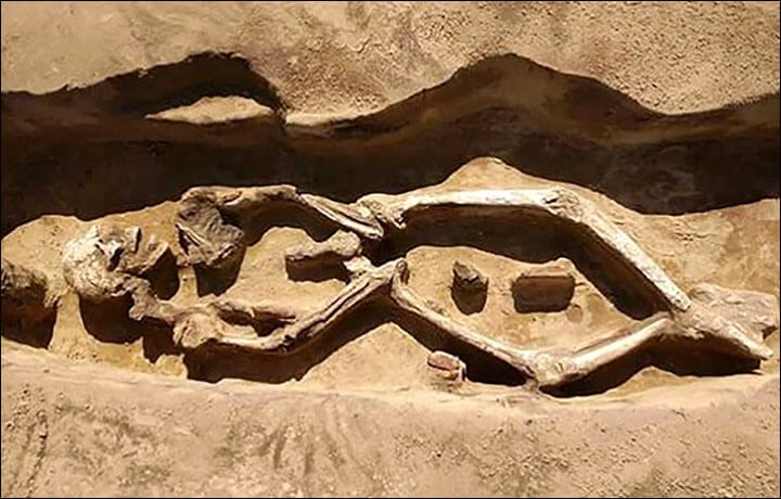 1,300-Year-Old 'Dancing Skeleton' Unearthed In Russian Far East