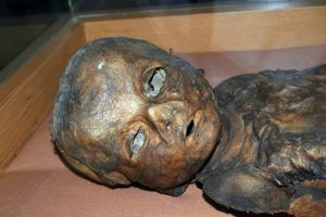 New Study Reveals The Secrets Of Ancient Turks Mummification