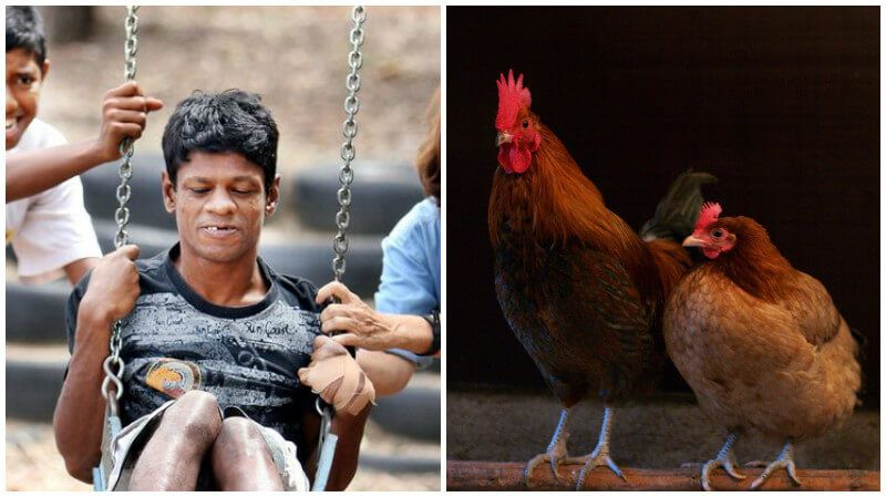 8 Unbelievable Stories Of Children Raised By Animals