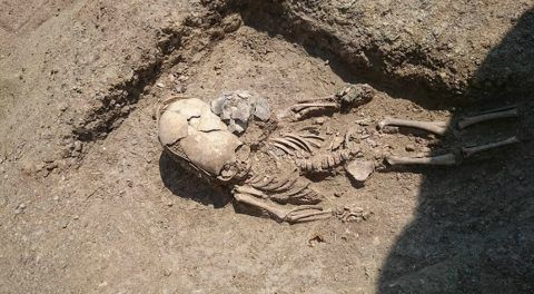 'Alien' Toddler Skeleton With Weird Elongated Skull Unearthed In Crimea