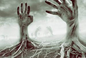 Death And Resurrection: 12 Real-Cases of Coming Back To Life