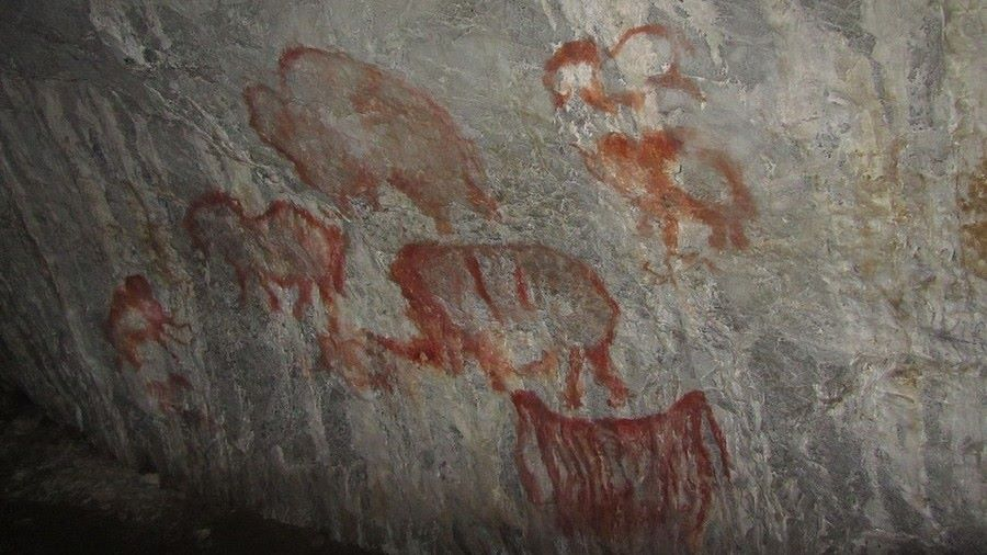 Prehistoric Russian Camel Painting Could Be 38,000 Years Old