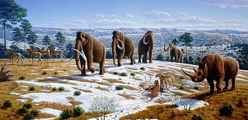 The Great Dying: Are We Already In The Middle Of Earth's Biggest Man-Made Mass Extinction?