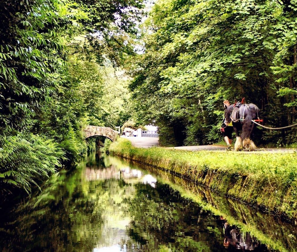 Horse Drawn Boat Trip On The Most Beautiful Canal In Britain
