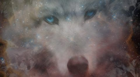 Animal Spirit Guides: How To Discover The Magic And Wisdom Of Your Original Power Animal