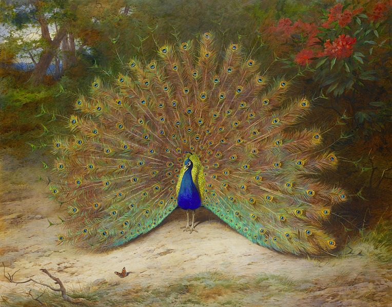The Significance Of Peacock In Ancient Culture And Art